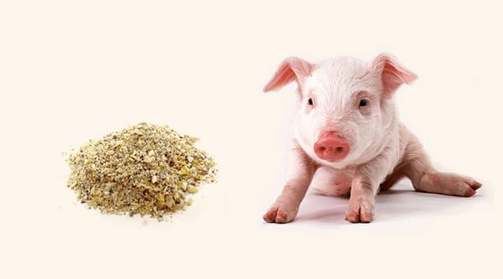 きなこ豚と飼料